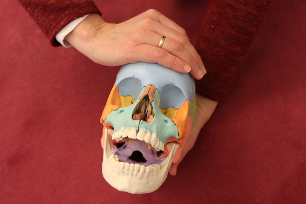 Cranio-sacral-Therapie in der Kieler Naturheilpraxis
